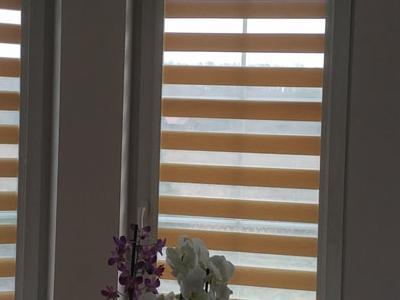 roleta na okno 24